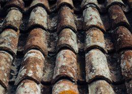 Revestimiento de techos